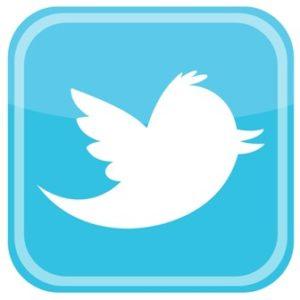 twitter_bird_icon